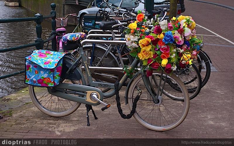bici floreada